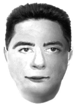 04-02-10-GP-HI-suspect-gppd